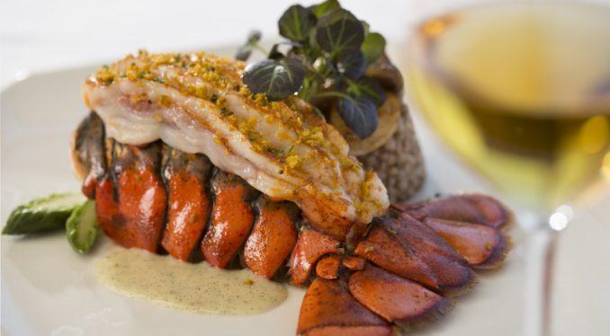 6mr_lobster